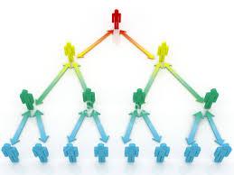 Network Marketing Software