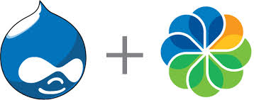 Why Drupal is the best choice for MLM software?