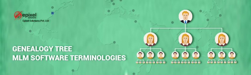 genealogy-terminology-in-network-marketing