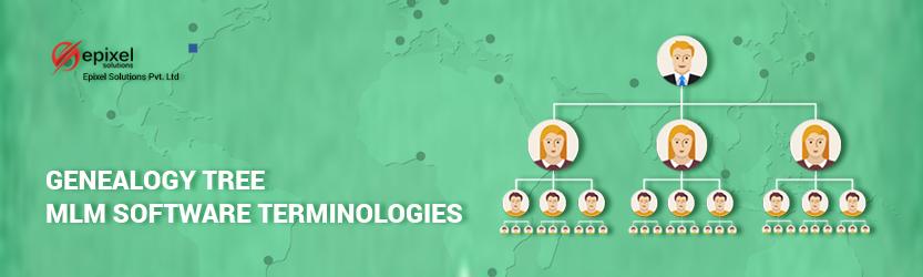 genealogy-terminology-in-network-marketing